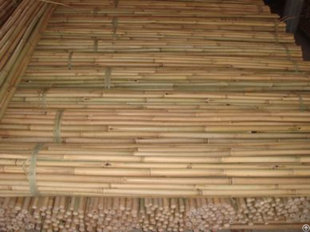 Bamboo Tonkin Craft