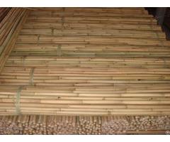 Bamboo Tonkin Craft