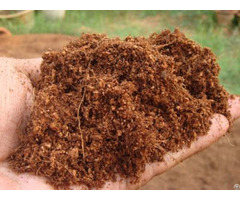 Unwashed Cocopeat