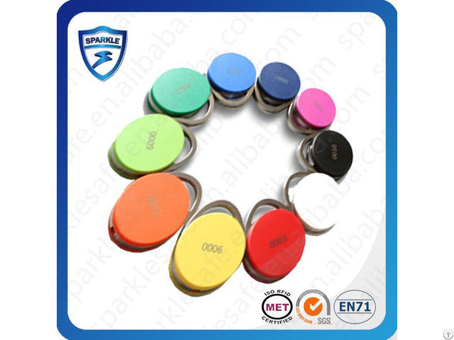 Active Door Lock Key Fob