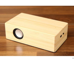 Bamboo Creative Gift Induction Speaker