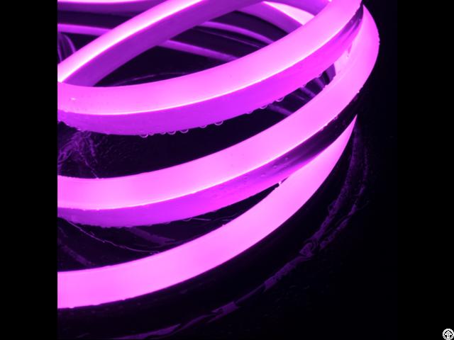 Domed Led Neon Flex
