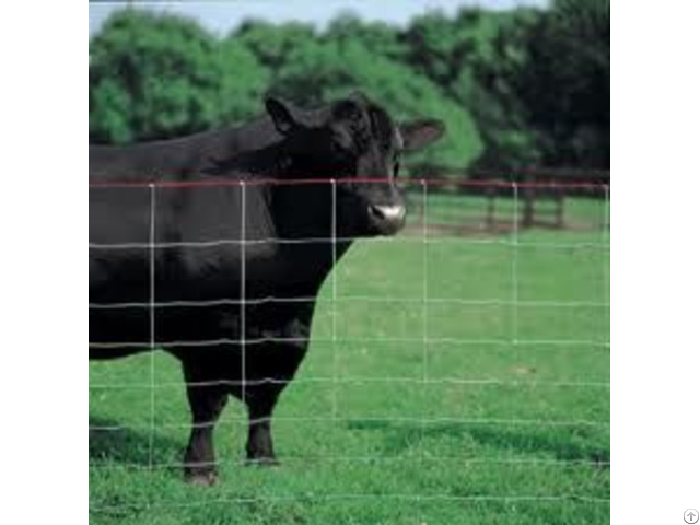 Square Deal Field Fence