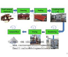 Cassava Flour Manufacture