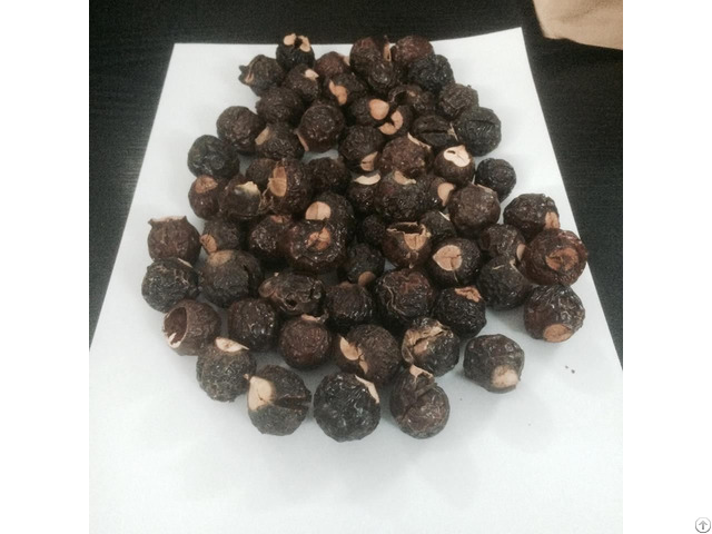 Soap Nuts Suppliers