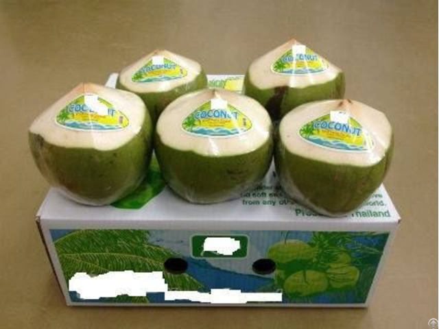 Fresh Diamond Coconut Head Shapped For Sale