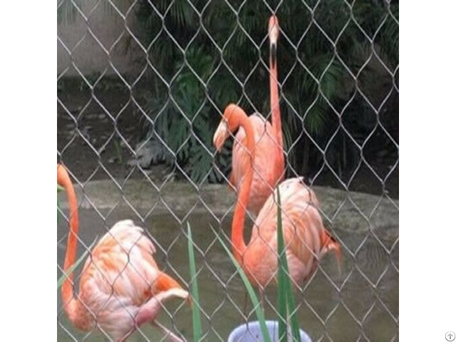 Chain Link Chicken Cage
