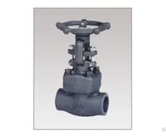 Forged Steel Bolted Bonnet Gate Valve Class 150 300 600 800