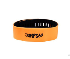 Rfid Bracelet Wristband Tags