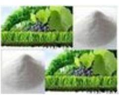 Magnesium Hydroxide Fertilizer