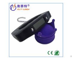 50kg 10g Portable Digital Luggage Scale Ns 10