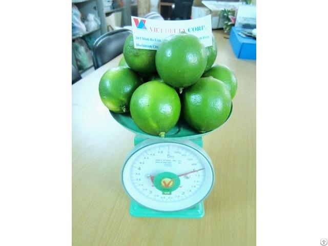 Fresh Lime Vietdelta