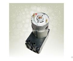 Micro Diaphragm Air Pump