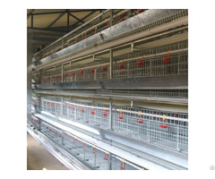 Broiler Battery Cage For Layer Chicken Farm Shed