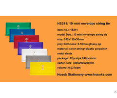 Hs241 10 Mini Envelope String Tie