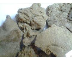 Moringa Seed Oil Cake Exporters