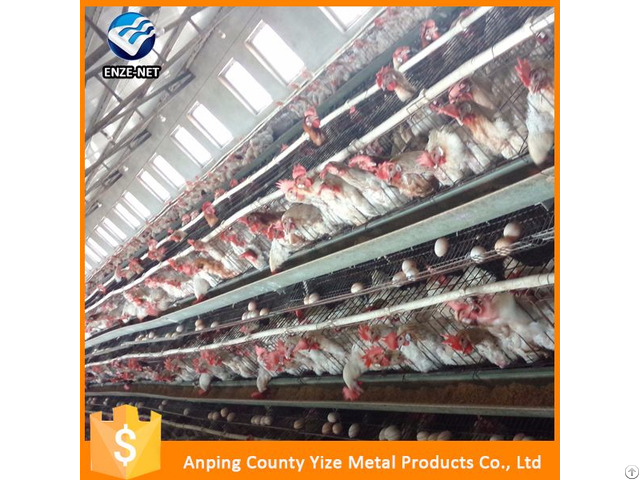 Cheap Price Made In China 3 Tier 120 Capacity Chicken Layer Egg For Poultry