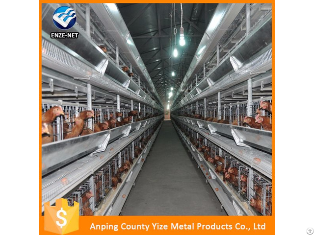 Galvanized Iron Wire Material Chicken Laying Cage