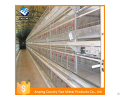 Battery Broiler Chicken Cage For Sale