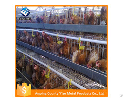 Types Of Layer Chicken Cages For Zimbabwe Poultry Farm