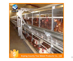 Layers Chicken Wire Mesh Suppliers In Harare