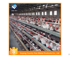 Chicken Feeding System H Type Battery Cage For Layers