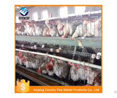 Poultry Uganda Layer Farm Chicken Cage For Sale