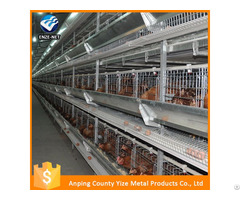 Automatic Chicken Layer Cage For Sale In Philippines