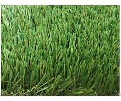 Landscaping Grass
