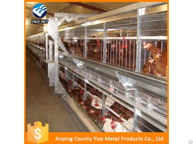 A Type Broilers Chicken Cages Design For Sale China