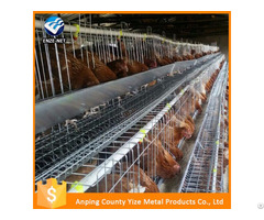 Automatic Poultry Layer Cages Systems Chicken Feeder For Egg Layers