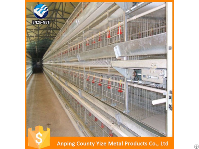 Chicken Feed Systerm Broiler Equipments Layers Battery Cage