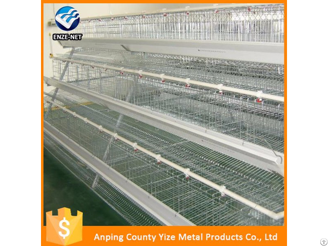 Wholesale Chicken Supplies Wire For Bird Cage