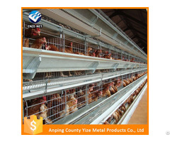 Hebei High Quality Type A Chicken Cage System