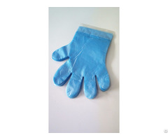 Cheap Daily Use Hand Protect Hdpe Poly Gloves