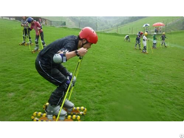 Grass Skiing Cart Equipment Mountain Outdoor Amusement Slide System