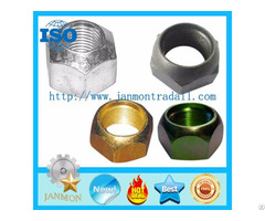Automotive Tire Nut Auto Tyre Nuts