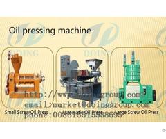 Edible Oil Manufacturer