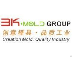 Custom 2k Mold