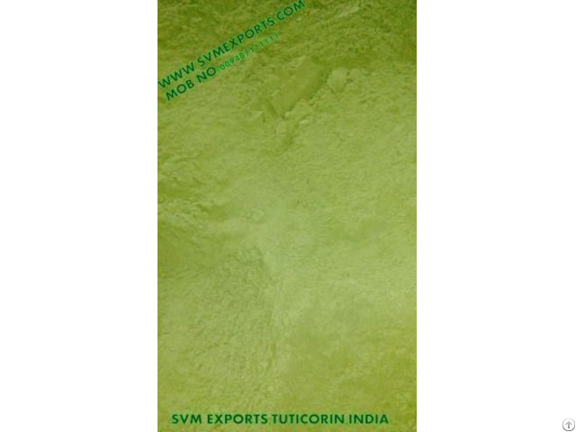 Pure Moringa Leaf Powder Exporters