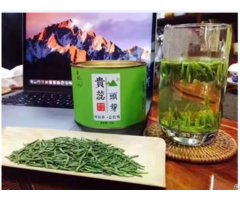 High Quality Fresh New Spring Tea No Pesticides Residue Pass Eurofins Test
