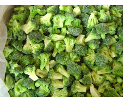 Frozen Broccoli20 40mm