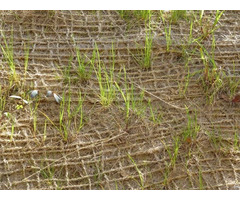 Jute Soil Saver Geo Textile