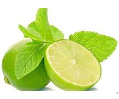 Lemon Manufacturers