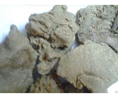 Best Price Moringa Seed Oil Cake Suppliers