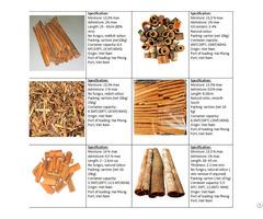 Cinnamon Cassia Broken Powder Tube