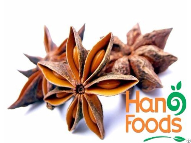 Dried Star Anise Flower From Vietnam