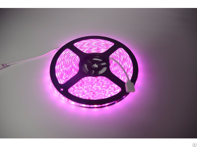 Flexible Wifi Rgb Led Strip Grow Lights With Remote Control Power Adapter