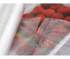 Safe Food Bag With Ce Iso Qs Certificates