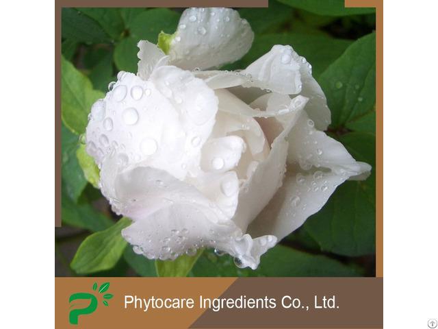 Skin Whitening Paeoniflorin White Peony Extract